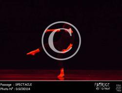 SPECTACLE-DSC00114