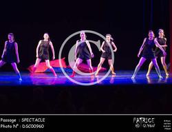 SPECTACLE-DSC00960