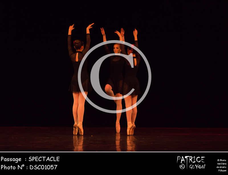 SPECTACLE-DSC01057