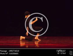 SPECTACLE-DSC00601
