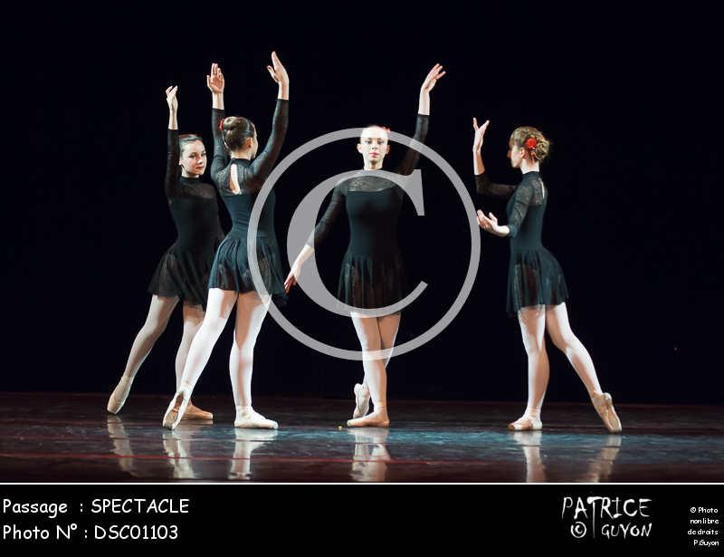 SPECTACLE-DSC01103