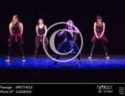 SPECTACLE-DSC00310