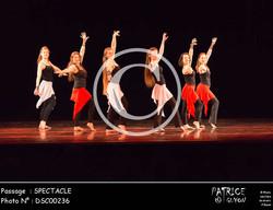 SPECTACLE-DSC00236