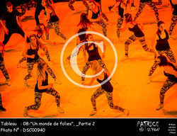 _Partie 2, 08--Un monde de folies--DSC00940