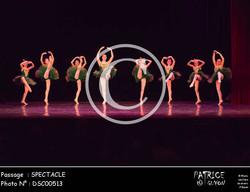 SPECTACLE-DSC00513