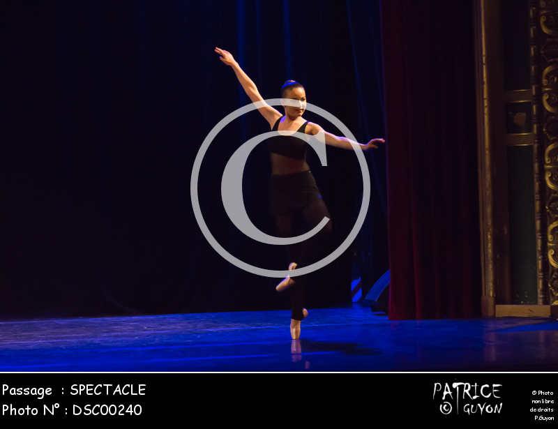 SPECTACLE-DSC00240