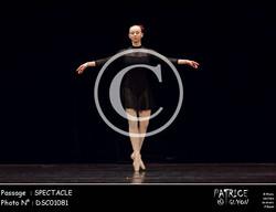 SPECTACLE-DSC01081
