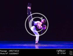 SPECTACLE-DSC00427