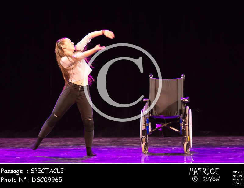 SPECTACLE-DSC09965