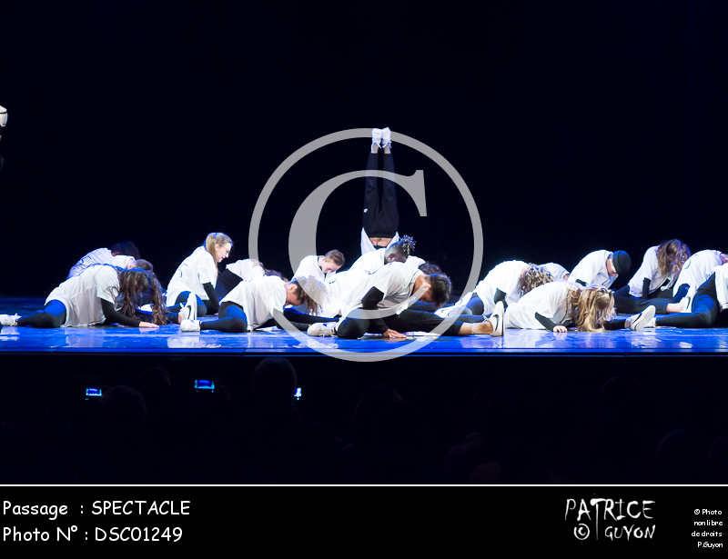 SPECTACLE-DSC01249