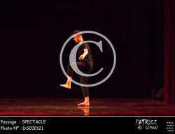 SPECTACLE-DSC00121