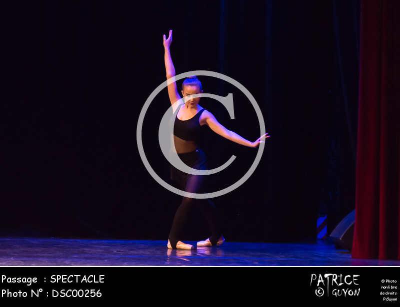SPECTACLE-DSC00256