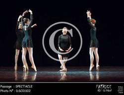 SPECTACLE-DSC01102