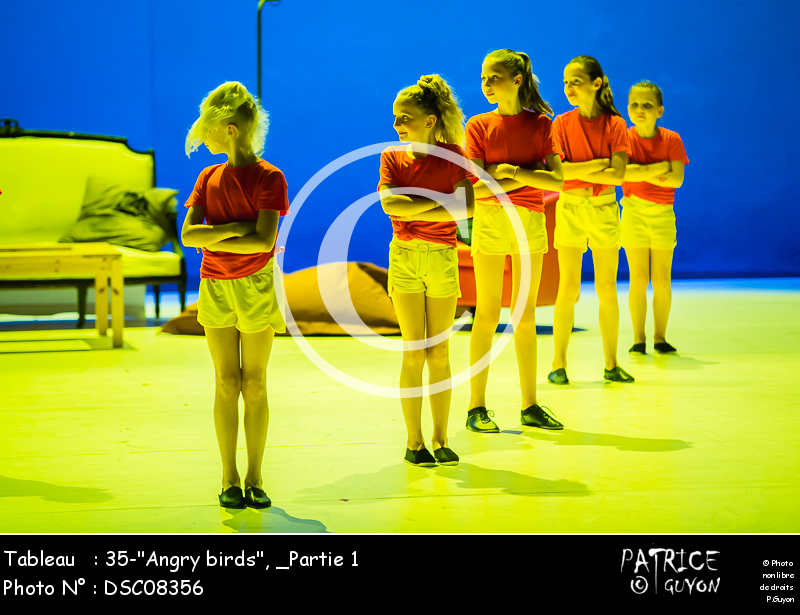 _Partie 1, 35--Angry birds--DSC08356