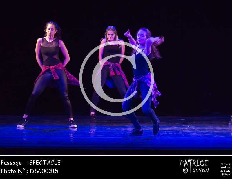 SPECTACLE-DSC00315