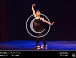 SPECTACLE-DSC00264