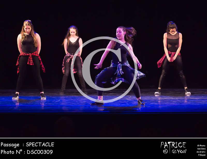 SPECTACLE-DSC00309