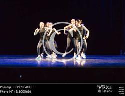 SPECTACLE-DSC00616