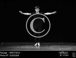 SPECTACLE-DSC01304