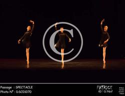 SPECTACLE-DSC01070