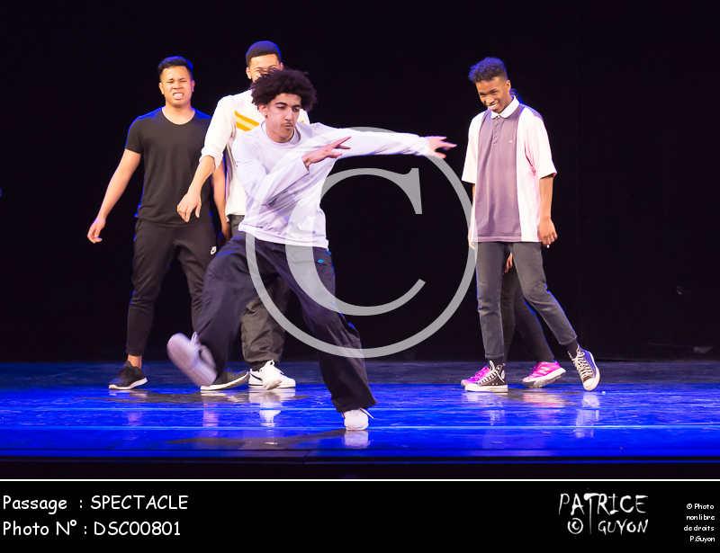 SPECTACLE-DSC00801