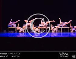SPECTACLE-DSC00075