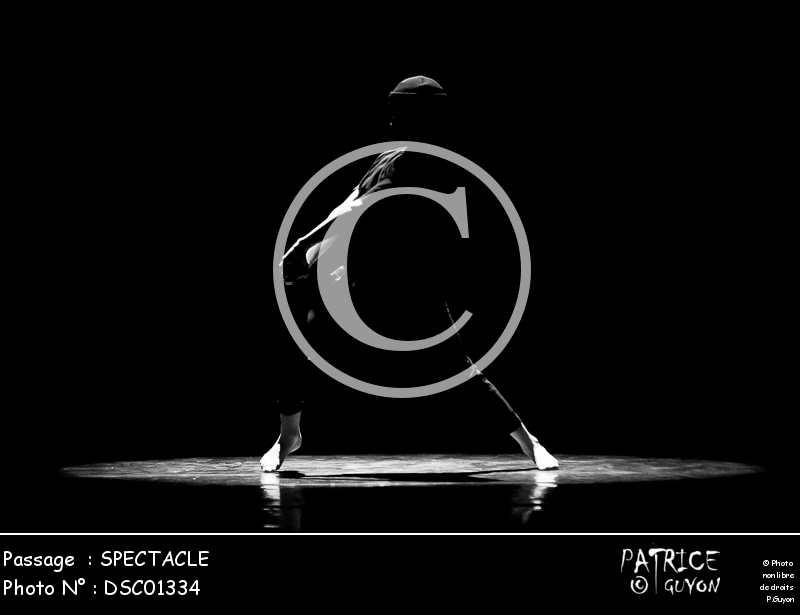 SPECTACLE-DSC01334