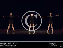SPECTACLE-DSC01067