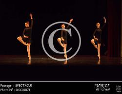 SPECTACLE-DSC01071