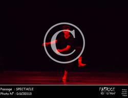 SPECTACLE-DSC00113