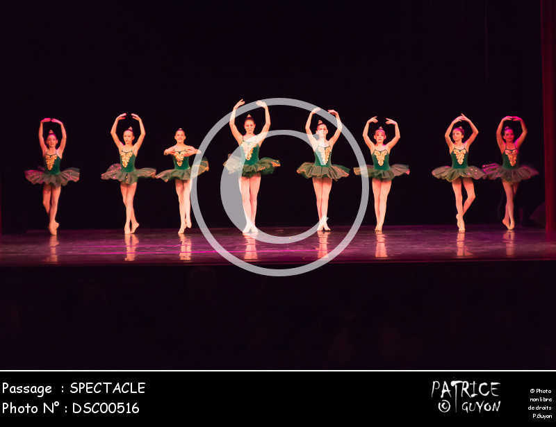 SPECTACLE-DSC00516