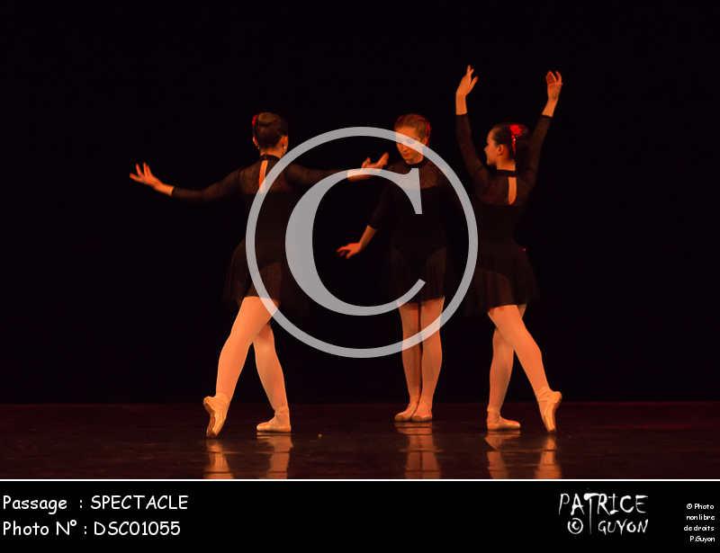 SPECTACLE-DSC01055