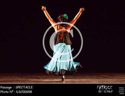 SPECTACLE-DSC00658