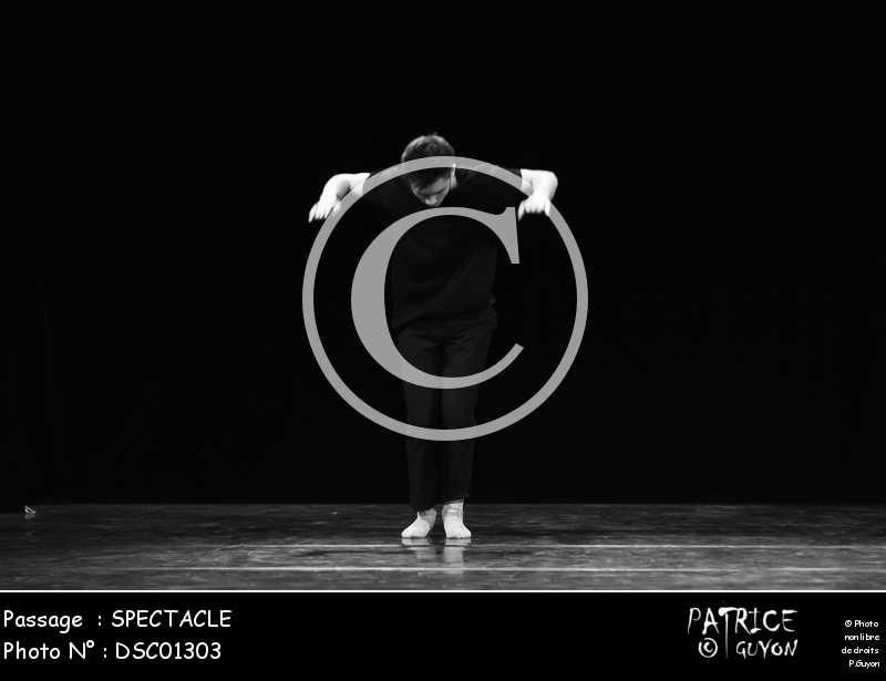 SPECTACLE-DSC01303