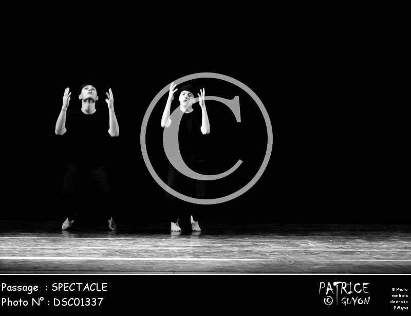 SPECTACLE-DSC01337