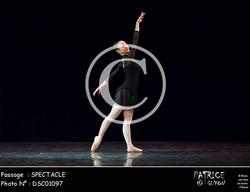 SPECTACLE-DSC01097