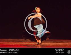 SPECTACLE-DSC00690