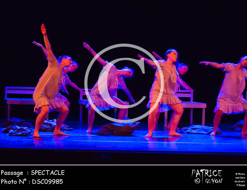 SPECTACLE-DSC09985