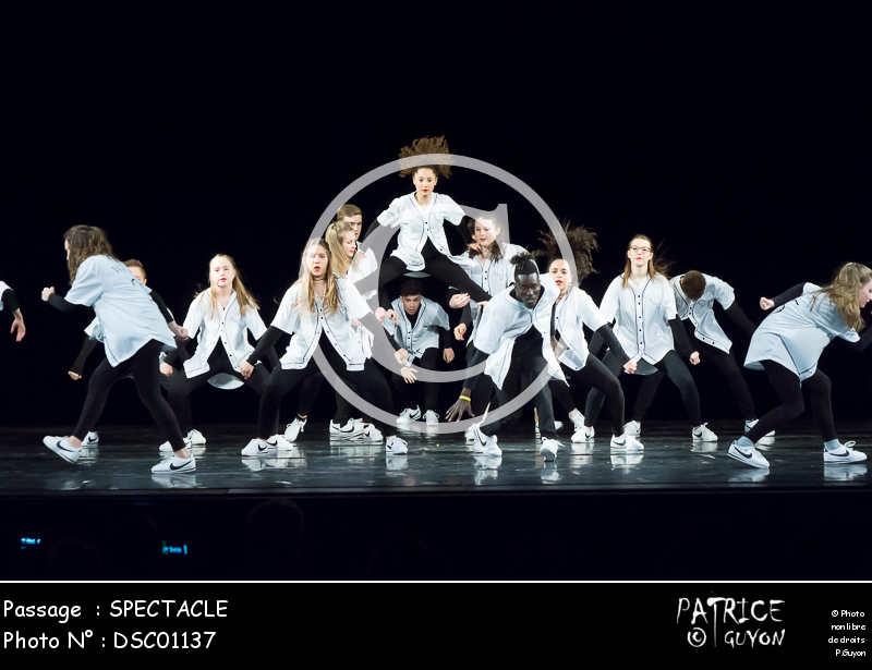 SPECTACLE-DSC01137