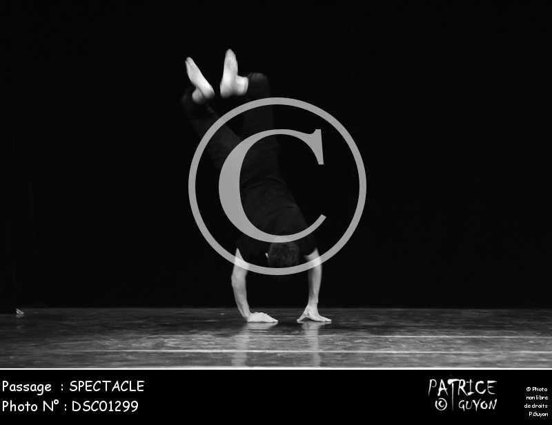 SPECTACLE-DSC01299