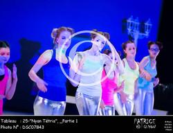 _Partie 1, 25--Nyan Tétris--DSC07843