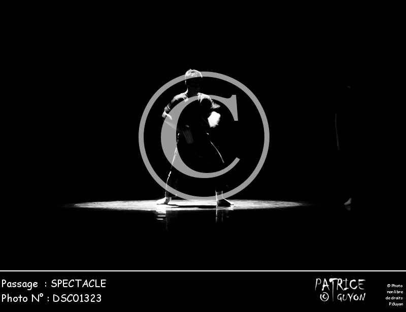 SPECTACLE-DSC01323