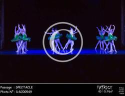 SPECTACLE-DSC00549