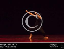 SPECTACLE-DSC00600