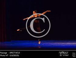 SPECTACLE-DSC00251