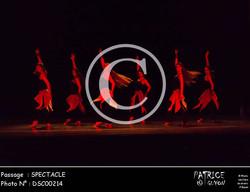 SPECTACLE-DSC00214