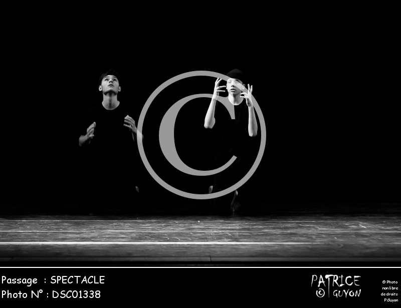 SPECTACLE-DSC01338