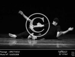 SPECTACLE-DSC01308