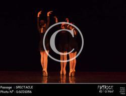 SPECTACLE-DSC01056