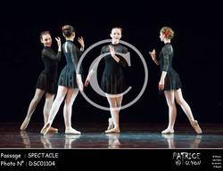 SPECTACLE-DSC01104